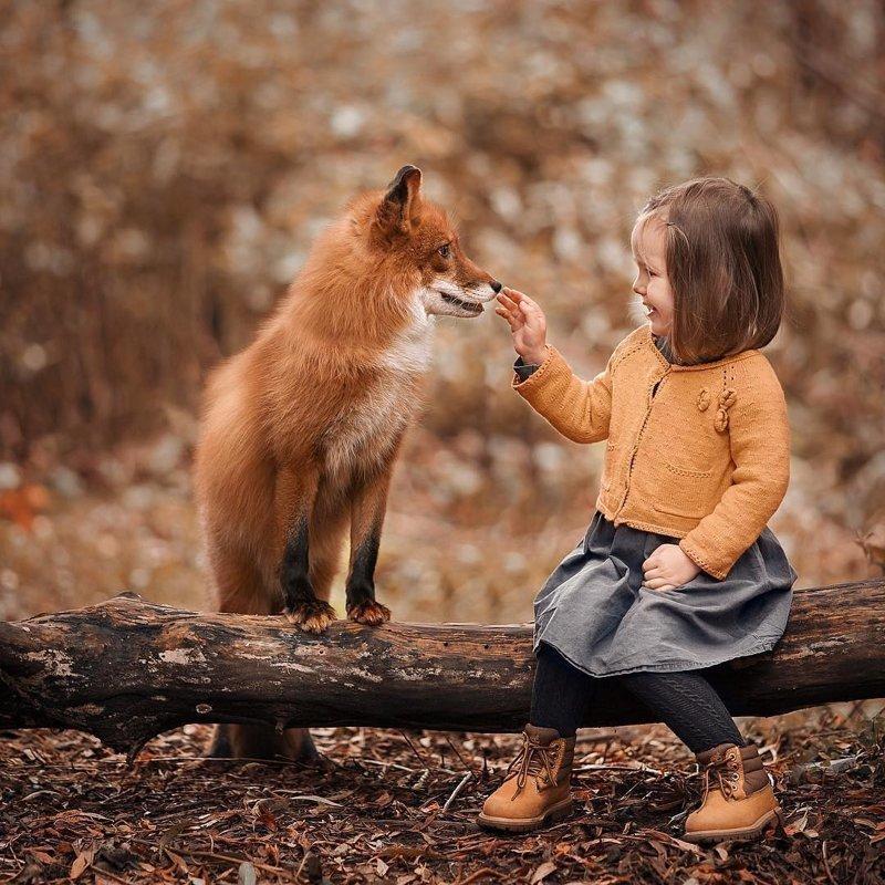 Интересные картинки детей с животными