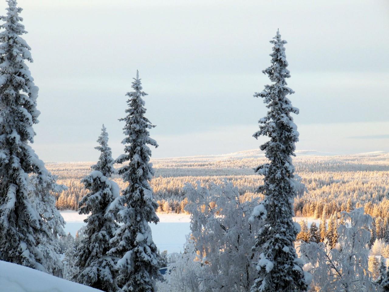 Лучший в Финляндии горнолыжный курорт Рука