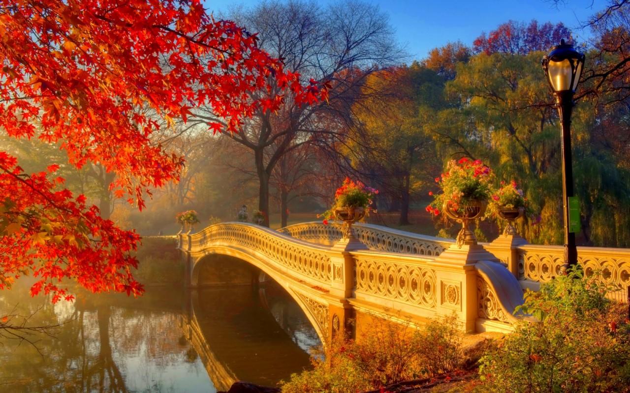 Открытки осень в городе