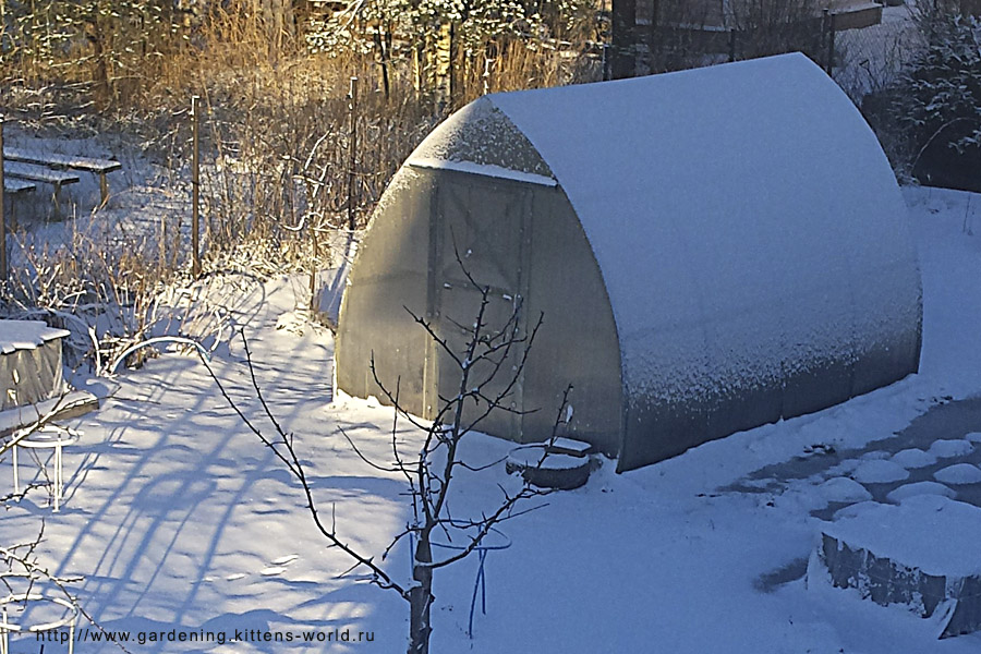 Надо ли набрасывать снег в теплицу