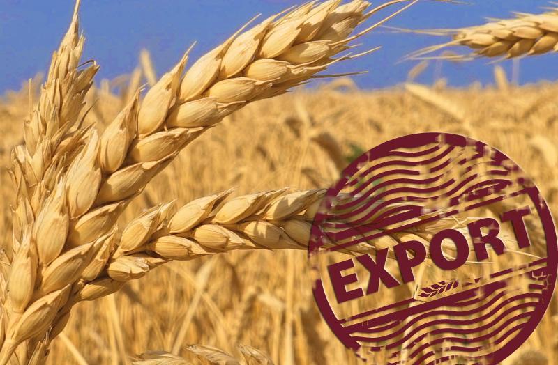 Российская пшеница будет продаваться на иранском рынке