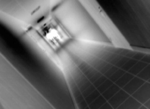 Жизнь после смерти - нашли доказательства