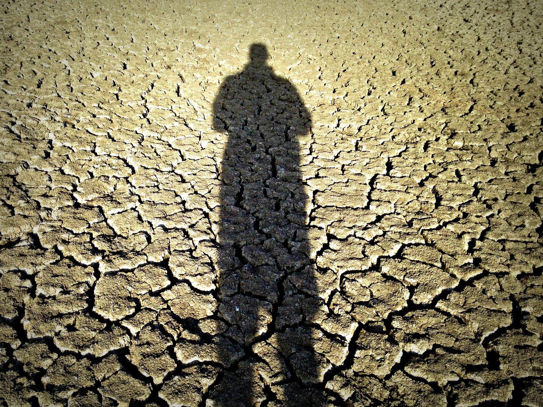 Сани уже не нужны, а летом следует готовиться к засухе: популярно об изменении климата геополитика