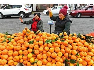 Тоска оранжевая. Почему до россиян не доходят дешевые абхазские мандарины? геополитика