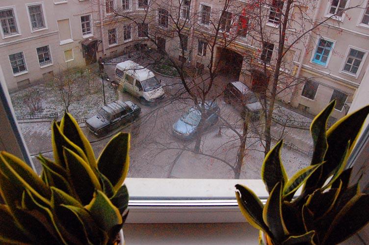 окна во двор выходят картинки открылся относительно