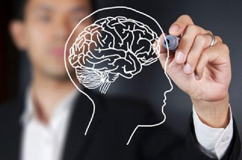 продукты, ухудшающие работу мозга