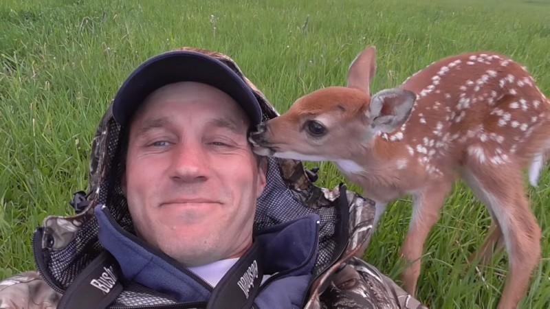 Маленький олененок не хочет уходить от своего спасителя! Посмотрите сколько благодарности!