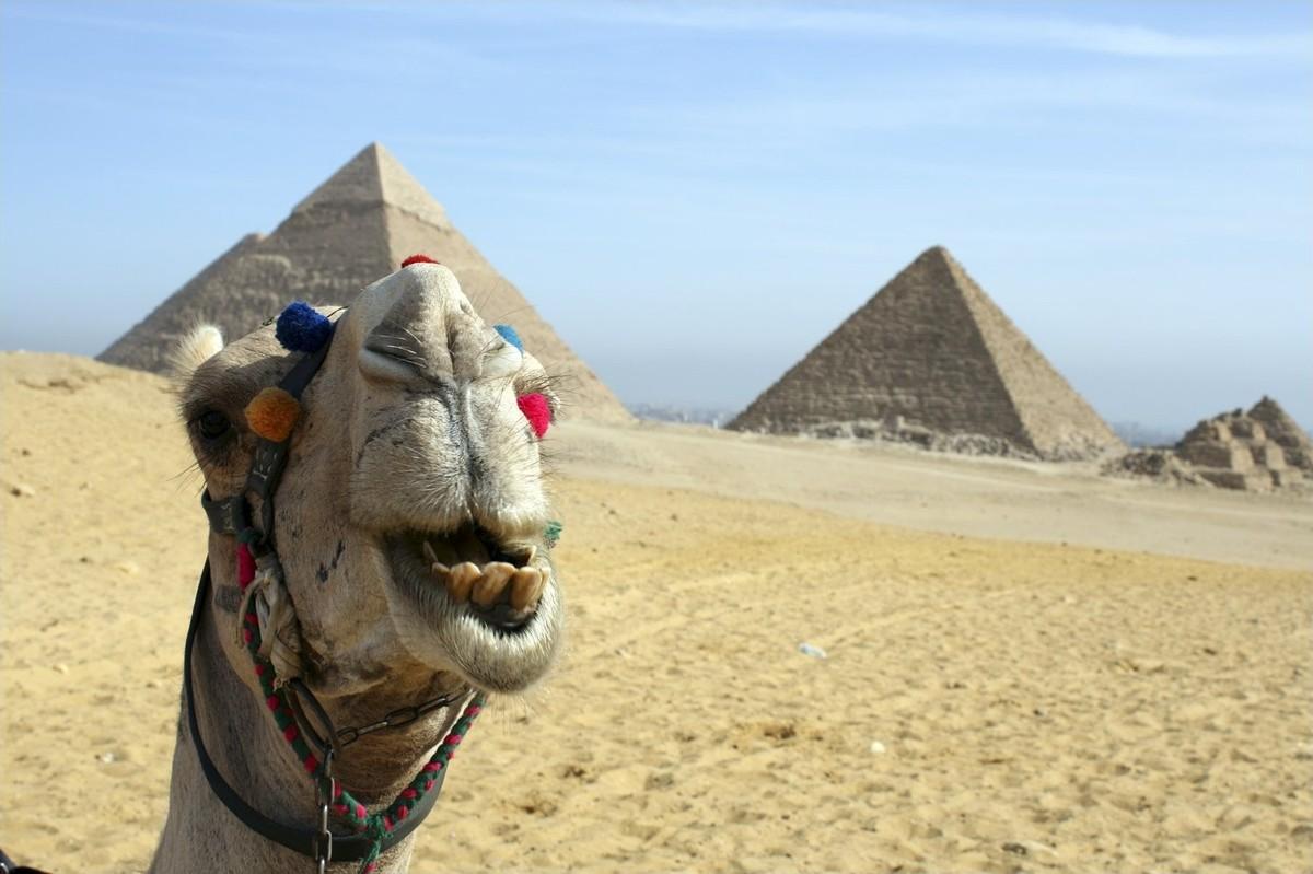Не так, как на картинках: самые разочаровывающие туристические путешествия мир,туризм