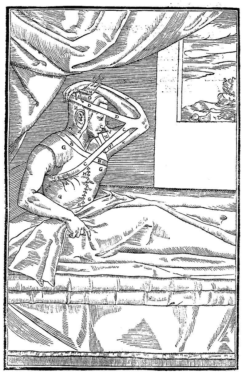 Худший секс-круиз в истории: как сифилис попал в Европу и изменил историю