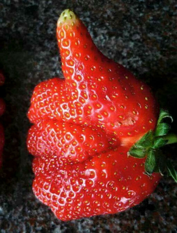 Картинки странные фрукты