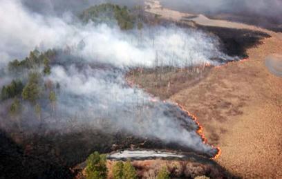 В Иркутской области горят десятки тысяч гектаров