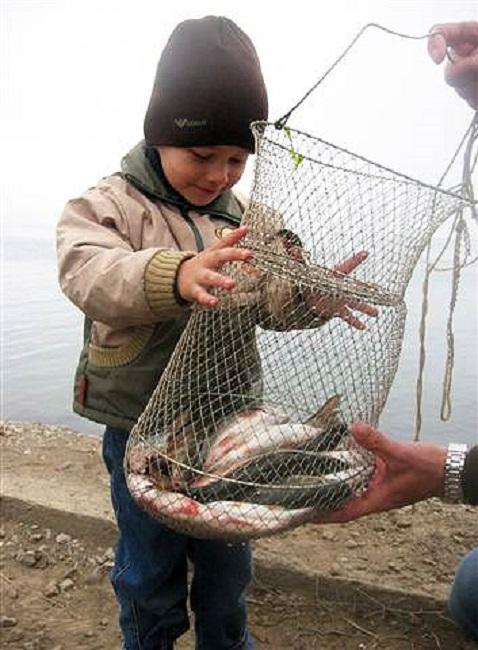 Ловля красноперки на хлеб с поверхности воды
