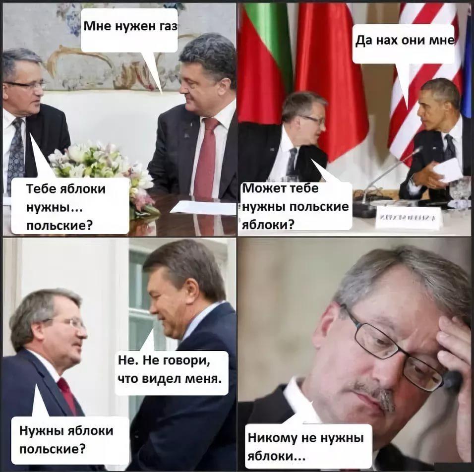 Прикольная днем, смешные картинки на польском