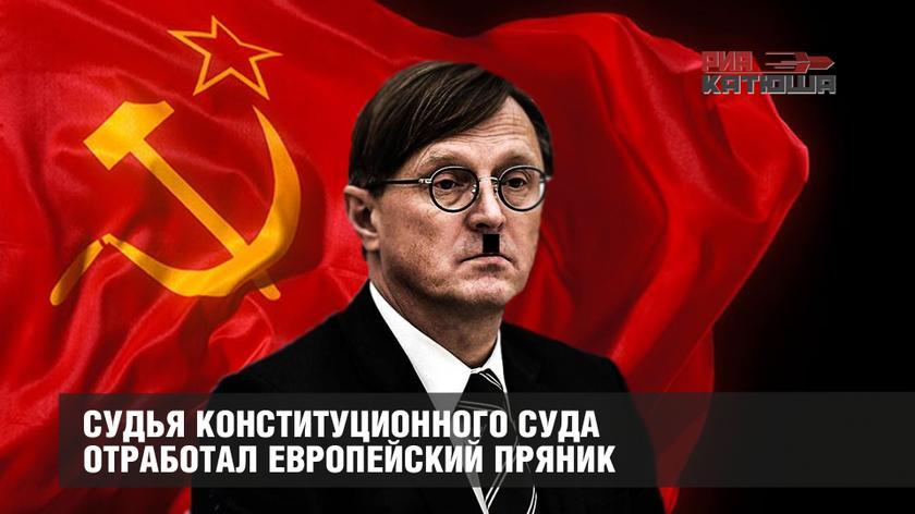 Cудья Конституционного суда отработал европейский пряник россия