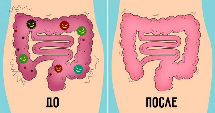 Очищаем кишечник от всех токсинов доступными средствами
