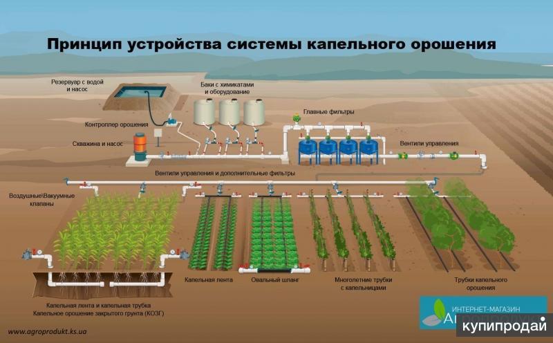 Капельное орошение на полях России