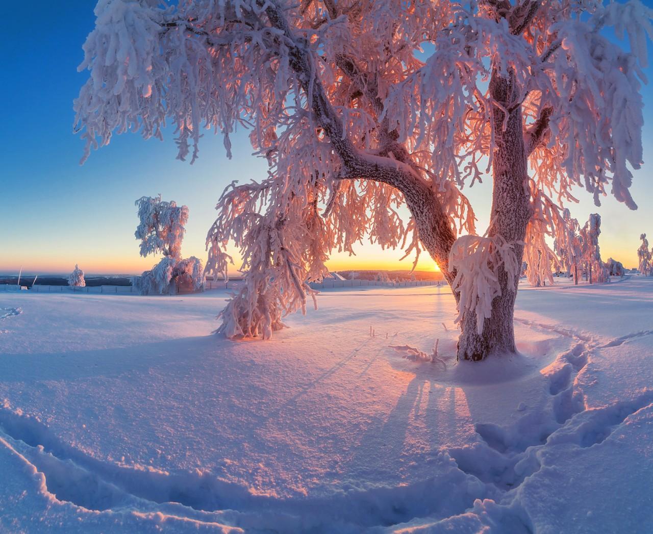 картинки красота русской зимы что она послужит
