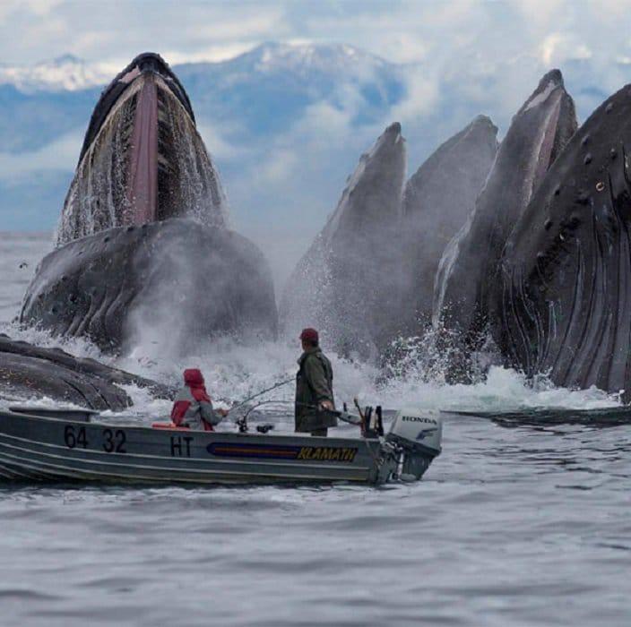 9 пугающих фотографий океана