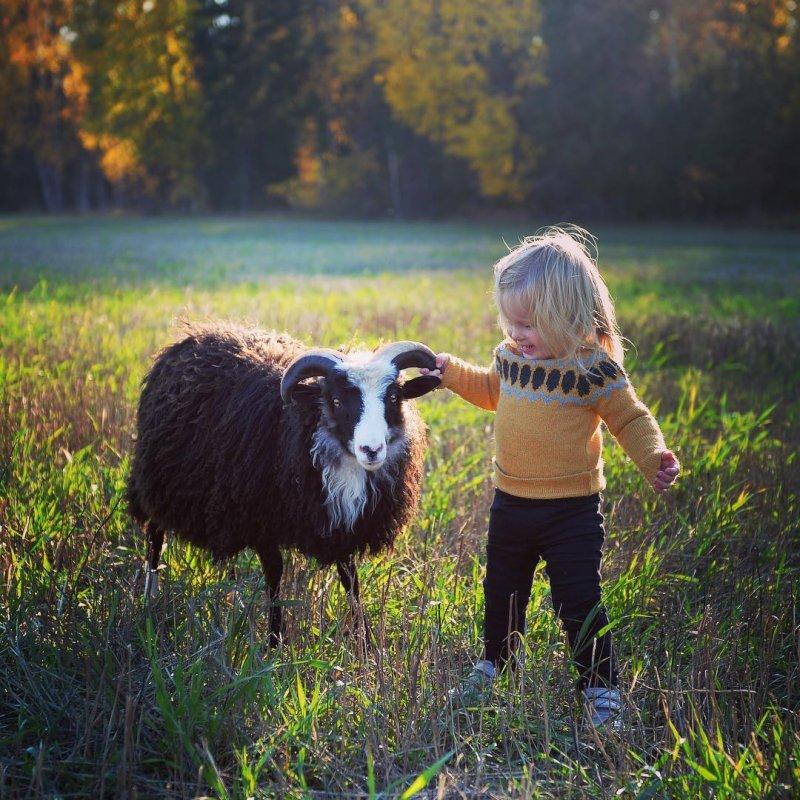 Почти что быка за рога взяла! дети, дружба, животные, кошки, ребенок, собаки
