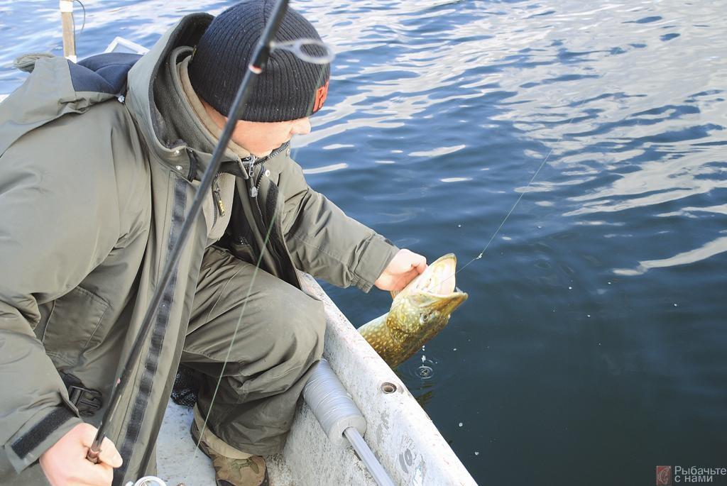 Принимая рыбу в воде рукой, зимой легко застудить пальцы. Несмотря на это, крупную щуку автор хватает рукой в воде, имеющей температуру всего несколько градусов.