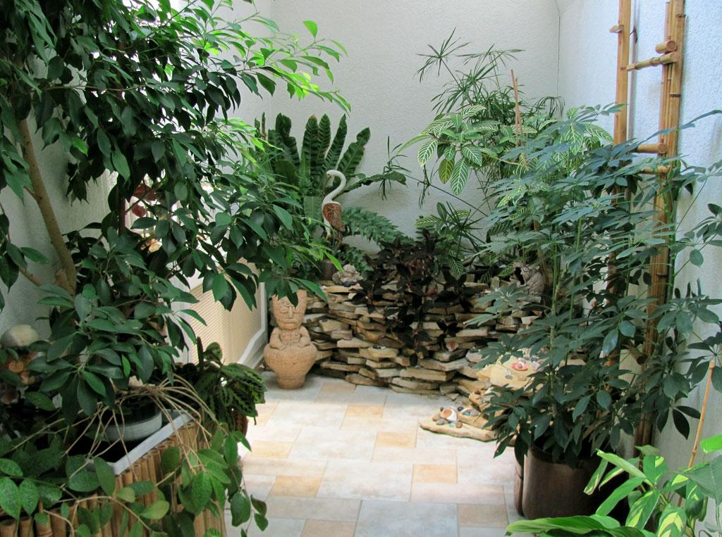 фото зимний сад в доме