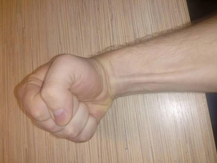 длинная ладонная мышца фото встретить самых