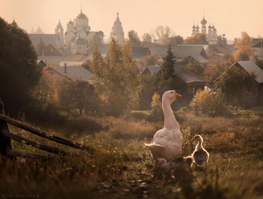 18. Суздаль, Россия.