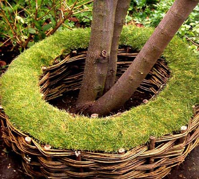Отличная идея для дачи - плетеный заборчик у дерева
