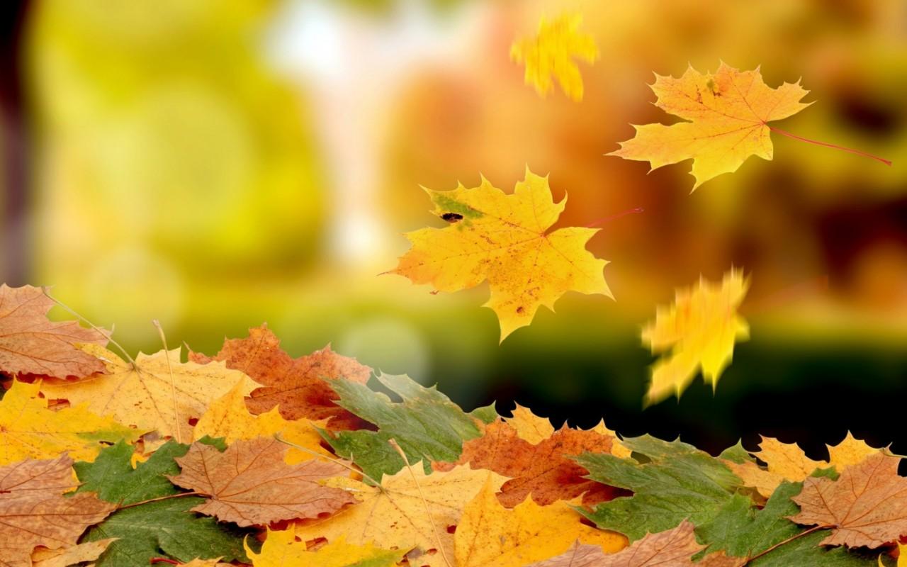 «Что-то тяжко мне на душе! Осень всему виной». Как преодолеть хандру осенью.