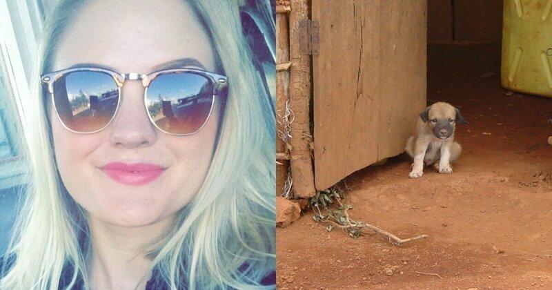 Норвежка приютила на курорте щенка и скончалась от бешенства мир,отпуск,поездка,туризм