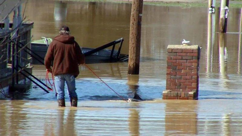 Мужчина поймал здоровенного сома у себя во дворе в мире, люди, наводнение, рыба, сом, улов