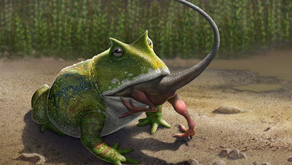 Древняя лягушка могла охотиться на динозавров
