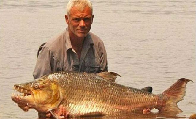 10 самых опасных рыб, обитающих в реках мира