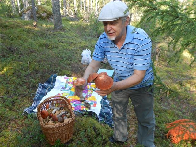 Грибы-грибочки....