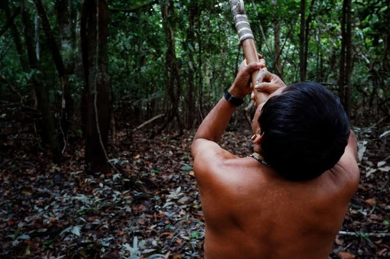 15. Племя матис, Бразилия - яд в глаза мир, ритуал, странность
