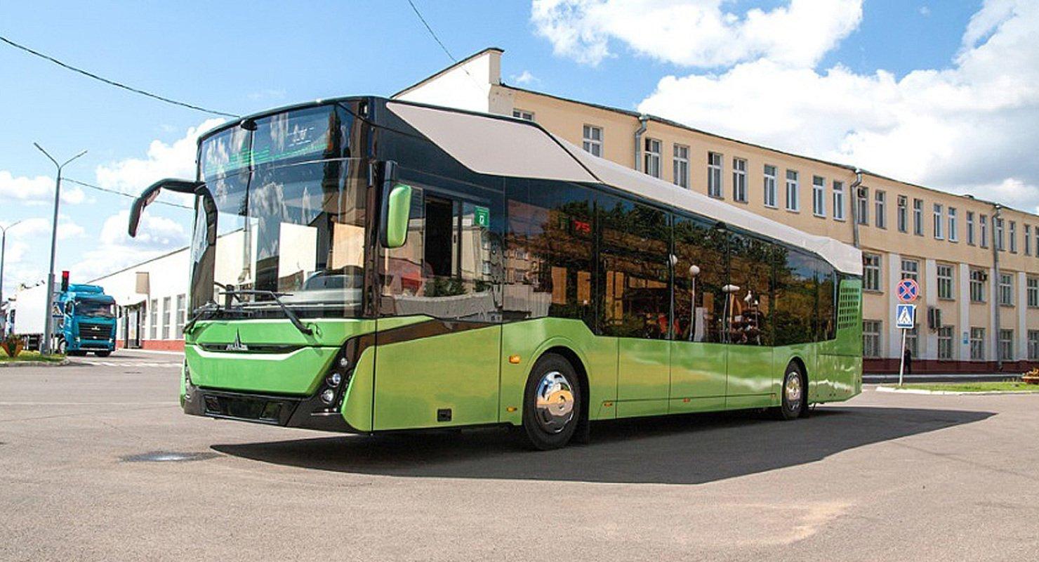 МАЗ-303 выиграл в номинации «Автобус года» Автомобили