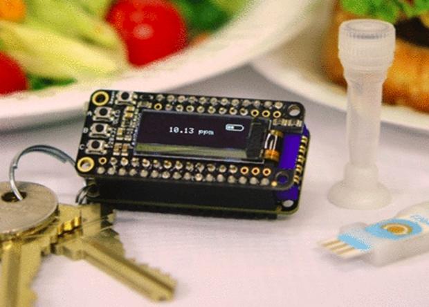 Брелок-детектор предупредит о наличии аллергенов в еде