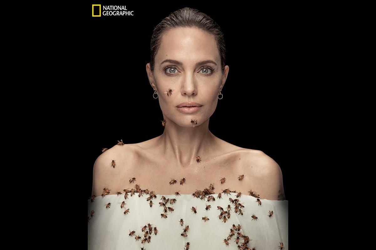 Анджелину Джоли снялась с ползающими по ней пчёлами