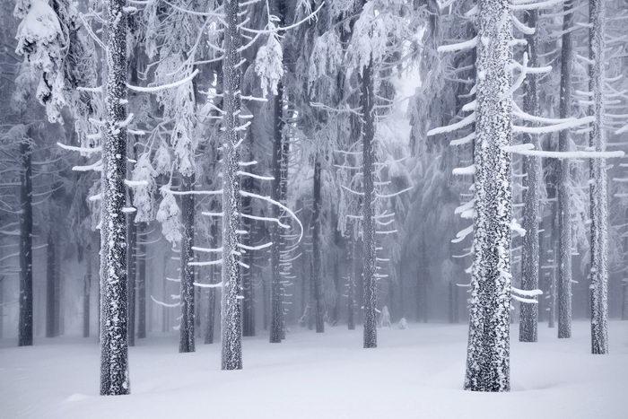 top loverme Зима в фотографиях ЗИМА В ГЕРМАНИИ НА ФОТОГРАФИЯХ
