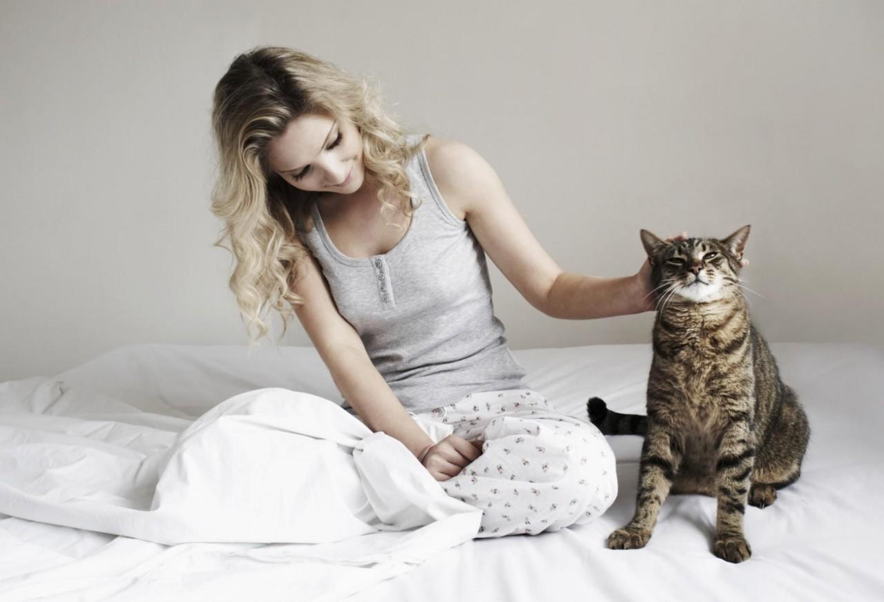 картинки с котами как люди бесчисленное множество вариантов