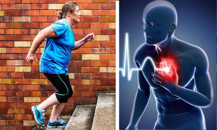 Как проверить, насколько изношено ваше сердце - тест с помощью лестницы