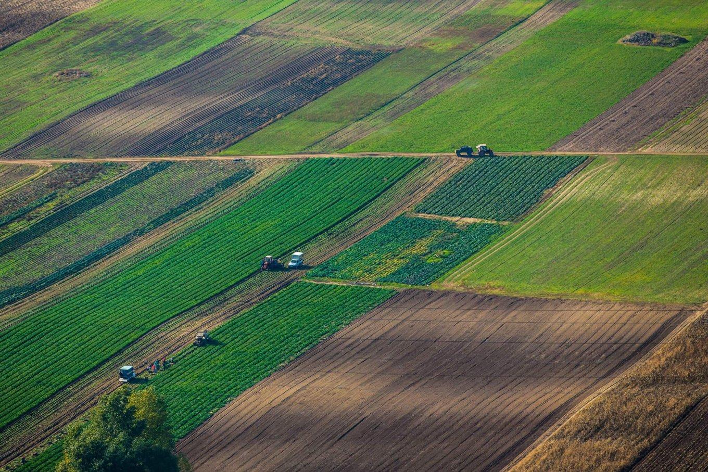 земельные паи сельхозназначения закон