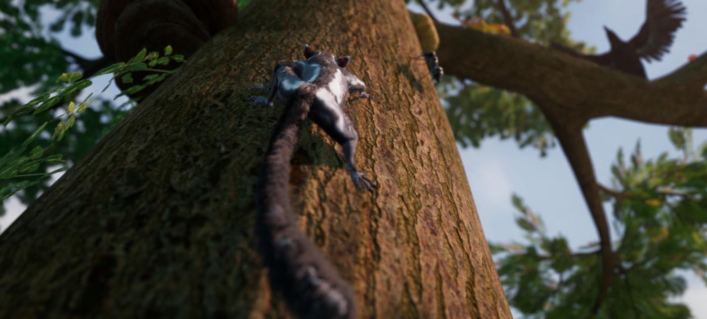 Адвенчура Away: The Survival Series с белкой-летягой выйдет на Xbox One в этом году action,adventures,pc,ps,xbox,Аркады,Игры,Приключения
