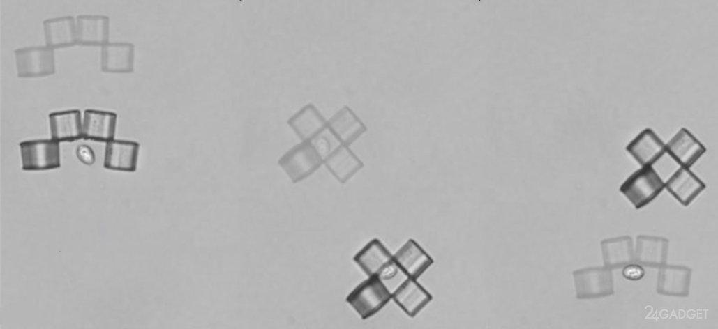 Наноботы против раковых клеток