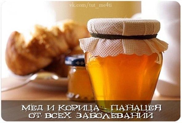 Смесь меда и корицы излечивает большинство заболеваний.