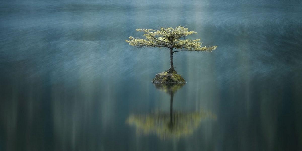 Остров на озере Ванкувер, Британская Колумбия, Канада