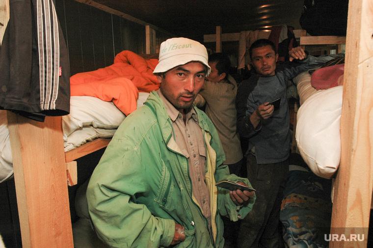Мигранты хотят остаться в России