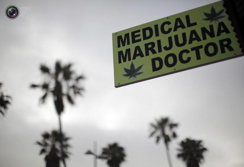 Так выглядит табличка диспансера, в котором продают препараты с медицинской марихуаной конопля техническая, медицина в США, пенька, продукты из конопли