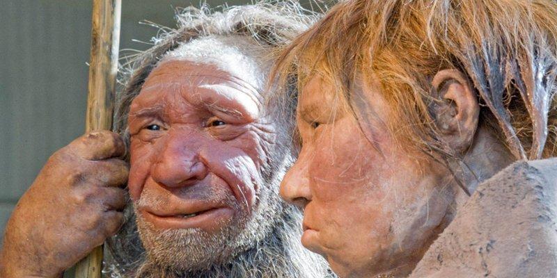 Неандертальцы без неприязни …