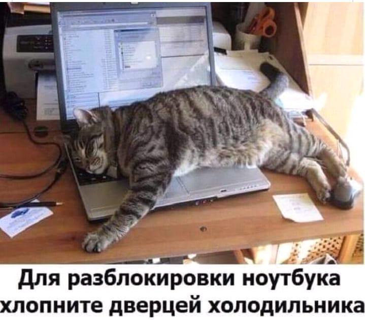 https://mtdata.ru/u3/photo6406/20874293512-0/original.jpeg#20874293512
